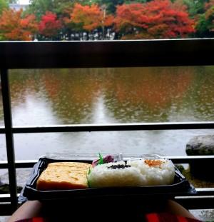 Nara, der Regen und die Rehe